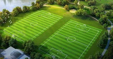 gothia-china-field